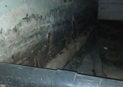 Crawl Space BEFORE
